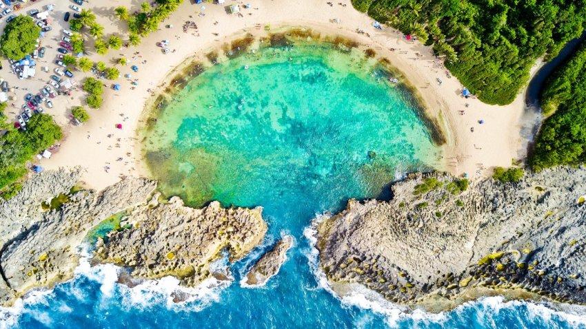 Mar Chiquita ManatiDo1qAV-X0AAL5qZ
