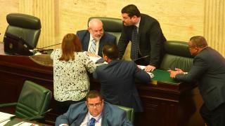 Imagen básica Cámara de Representantes