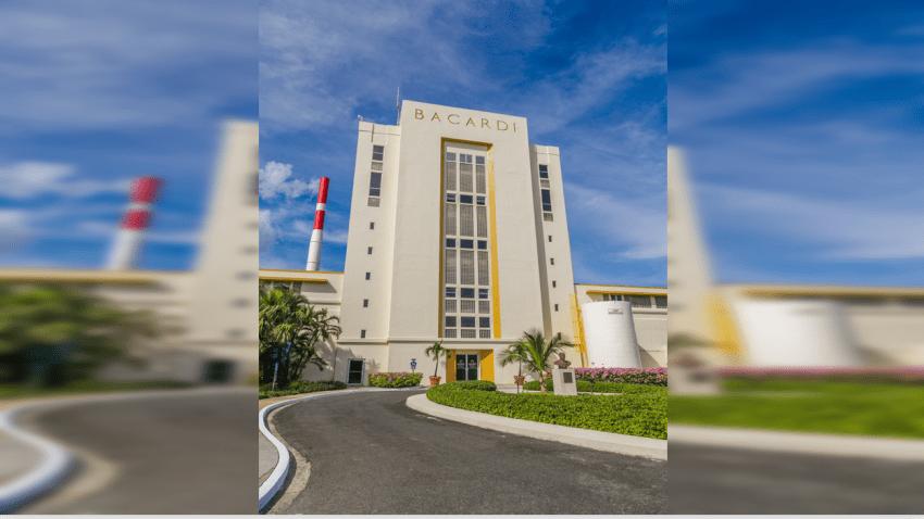 Destilerías de Puerto Rico transforman su producción para hacer alcohol etílico