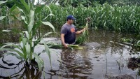 Cristóbal se desplaza sobre Guatemala y volvería a México para luego salir al Golfo
