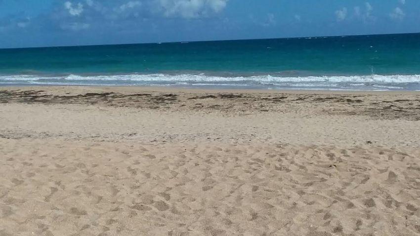 playa_242 (2)1