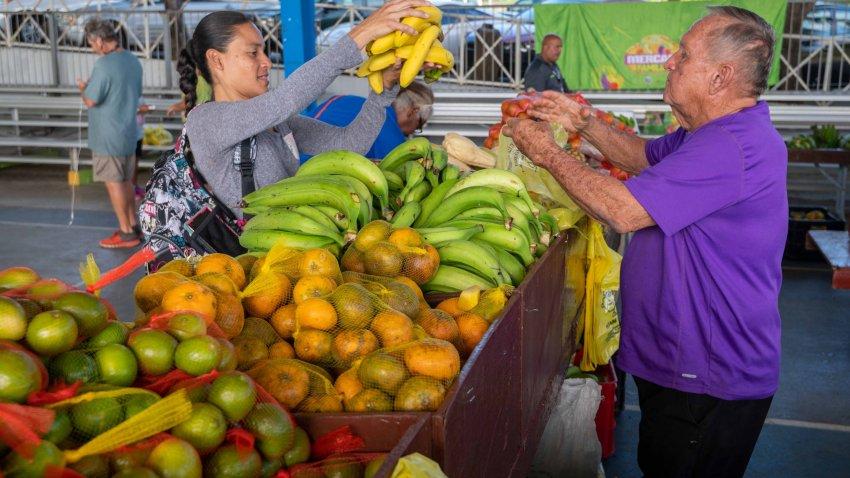 A partir del viernes 29 de enero de 2021   Regresan los mercados familiares del Departamento de Agricultura.