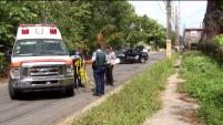 Otros dos individuos fueron asesinados este lunes en Barceloneta y Vieques.