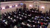 La medida obtuvo 45 votos a favor y ninguno en contra.