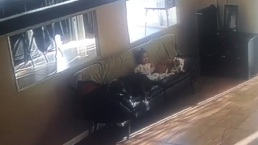 Momento de ternura: familia capta a bebé arrullando a sus perros pitbull
