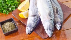 Bajo la mirilla del DACO venta de pescados