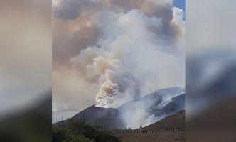 Se reporta fuego forestal en el Expreso PR-52