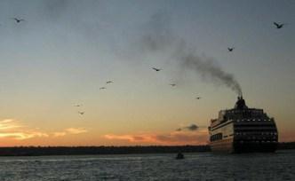 Se pierden $2.5 millones por cancelaciones de cruceros