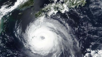 Corea del Sur: alerta por llegada de primer tifón en 6 años