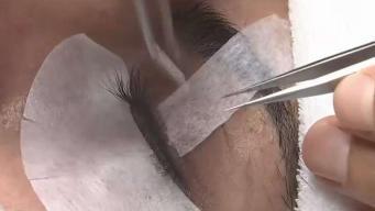Asco: aumentan casos de liendres en pestañas postizas