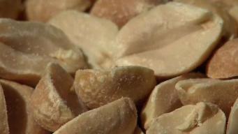 Anuncian tratamiento para prevenir reacciones alérgicas del maní