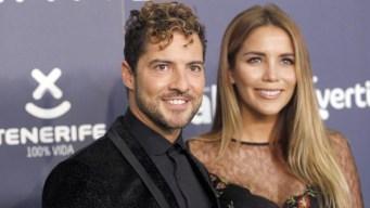 """David Bisbal y Rosanna Zanetti se casan en boda """"discreta"""""""