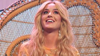 Katy Perry es hallada responsable de plagio