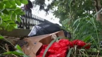Horror: Hallan brazos y piernas en un parque dominicano