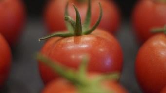 Los diez alimentos indispensables para la salud de tu corazón