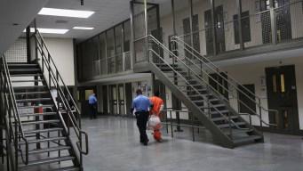 Eliminación de deportaciones obligatorias: qué hacer