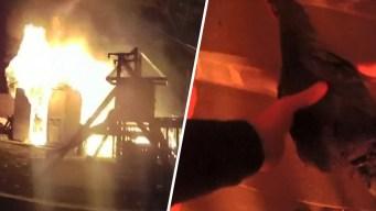 Rescate en video: se arriesga para salvar a una gallina