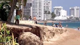 Buscan a profesionales para atender erosión en Ocean Park