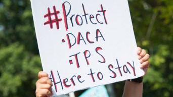 El Salvador: alegría por fallo que prohíbe cancelar TPS
