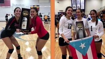 Voleibolistas boricuas llegan a los playoffs de la NCAA