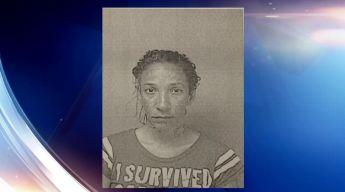 A la cárcel mujer que supuestamente mató un gato y lo colgó