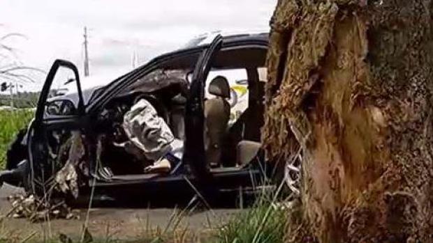 [TLMD - PR] Mujer muere tras impactar árbol en la carretera