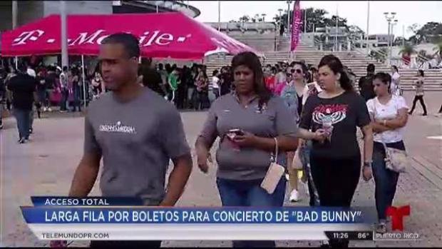 Decenas hacen filas por boletos de Bad Bunny