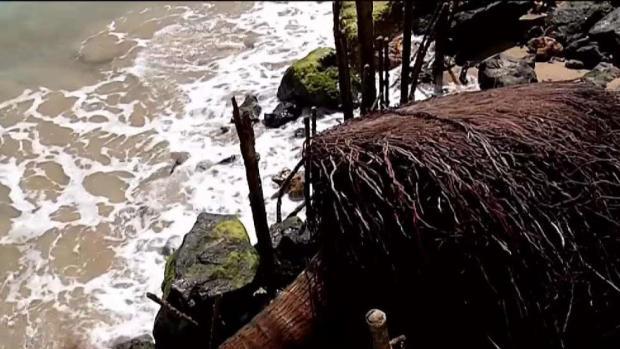 [TLMD - PR] Falta de fondos en Recursos Naturales para contratar consultores ante erosión en Ocean Park