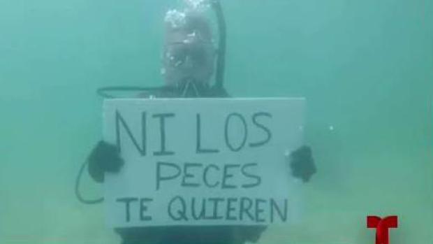 """[TLMD - PR] """"Ni los peces te quieren"""""""