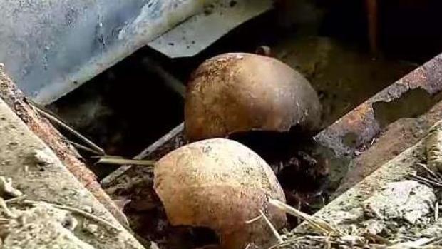 [TLMD - PR] Cementerio de Lajas: cajas y bolsas con restos humanos en fosa ilegal