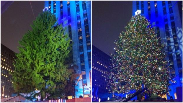 Árbol navideño de Nueva York brilla por todo lo alto