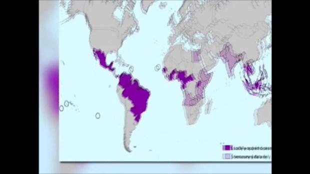 OMS alerta sobre propagación explosiva del virus del Zika