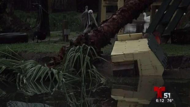 [TLMD - MIA] Tormentas dejan muertos en Alabama