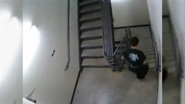 [TLMD - NATL] Video de juez persiguiendo a reos que tratan de escapar