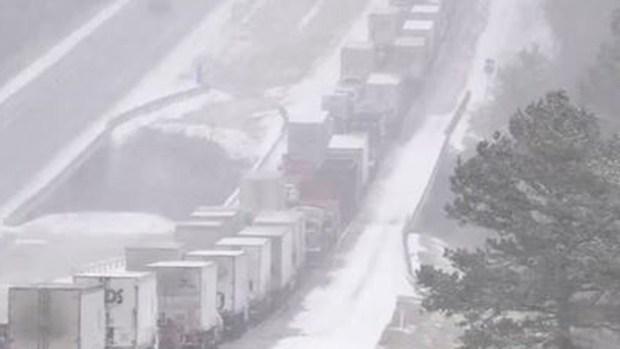 Nieve y frío azotan a millones y causan estragos