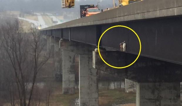 [TLMD - NATL] Insólito rescate: cabras intrépidas acaban atrapadas en puente muy alto