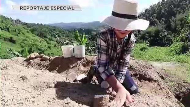 [TLMD - PR] Amor por la tierra