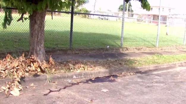 Baleados y amordazados: dos jóvenes son asesinados cerca del Ramos Antonini