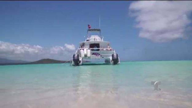 Experimenta y conoce la costa en un  catamarán