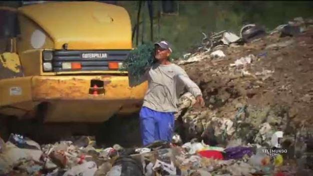 Industria de los rescatadores de basura también llegó a Puerto Rico