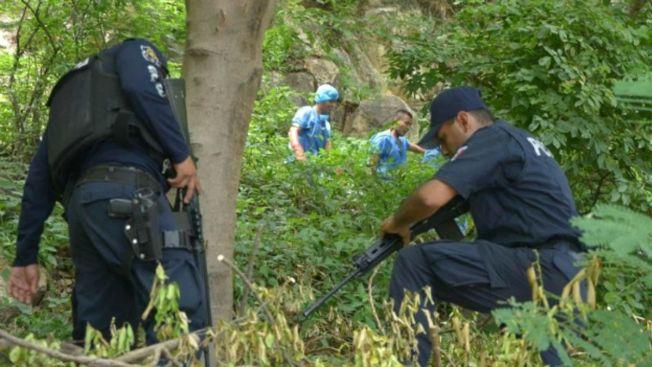 México: Hallan fosa con restos óseos en Guerrero