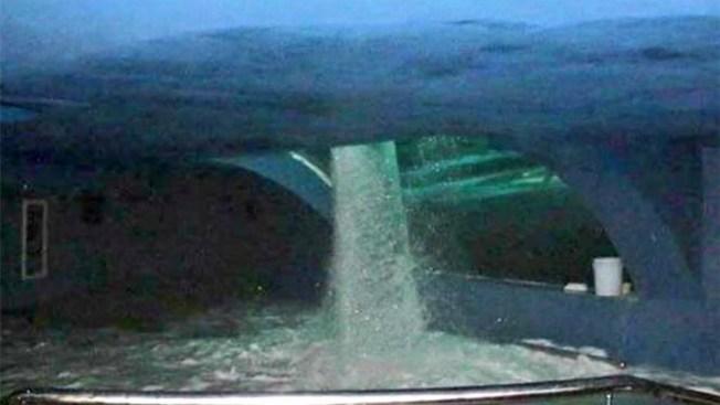 Un acuario colapsa a 38 días de su apertura