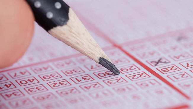 Reanudan sorteos de la Lotería Electrónica