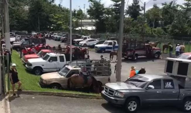 """Primera cabalgata familiar"" invade las carreteras de Trujillo Alto"