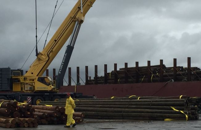 En dos semanas llegarán más postes y cables a la isla