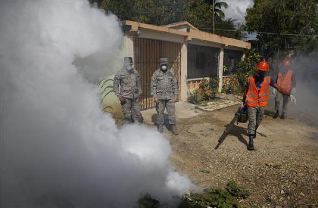 OMS declara emergencia global por el Zika
