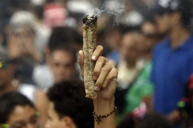 Se manifiestan por la despenalización del consumo de marihuana