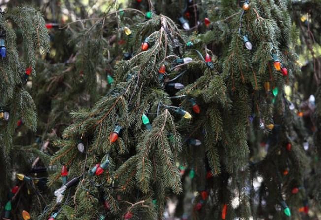 No habrá decoración navideña ni fiestas en Caguas