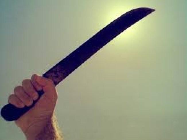 Individuos cometen carjacking con machete en Manatí