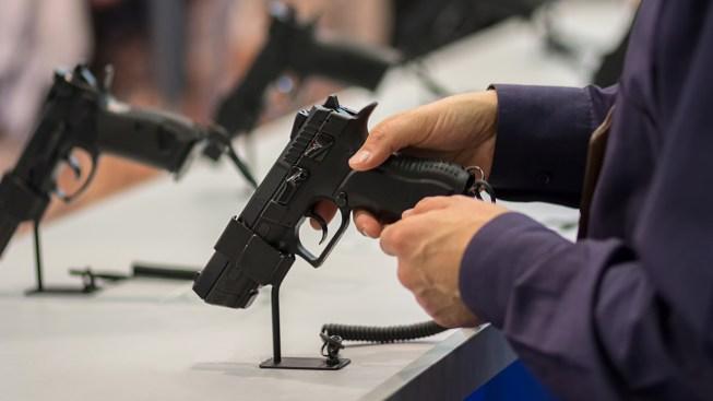 Cámara Baja aprueba proyecto para facilitar traslado de armas